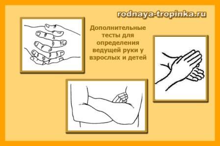 тест для определения ведущей руки